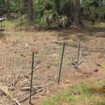 Shorter Fence