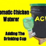 Adding the Drinking Cup to the Automatic Chicken Waterer