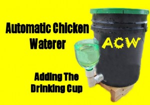 Adding the Drinking Cup to the Homemade Automatic Chicken Waterer