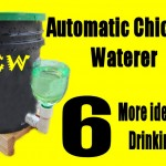 Automatic Chicken Waterer - 6 more ideas for Drinking Cup