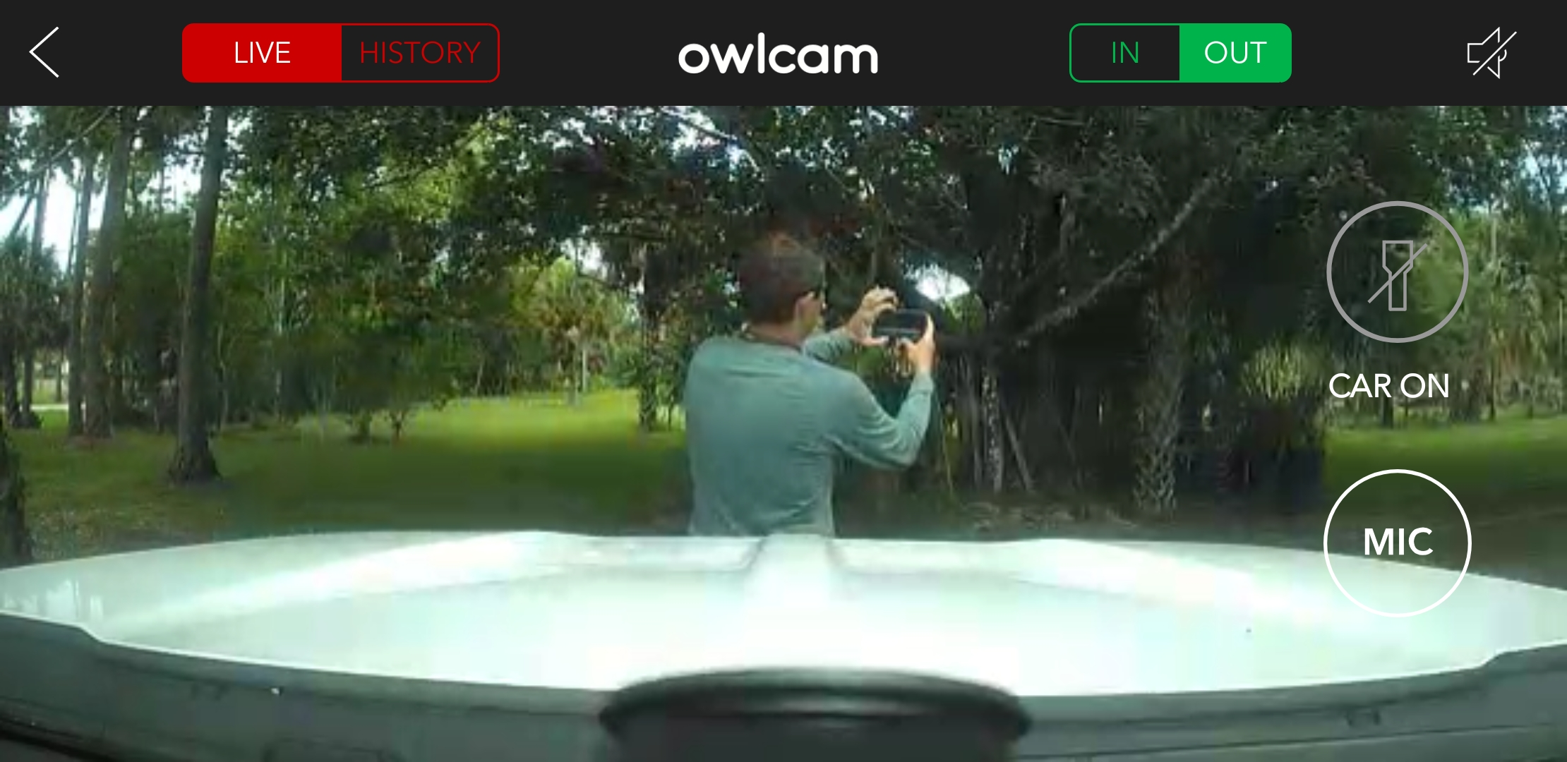 Owl Car Cam Live View